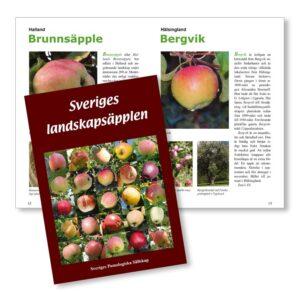 Sveriges landskapsäpplen