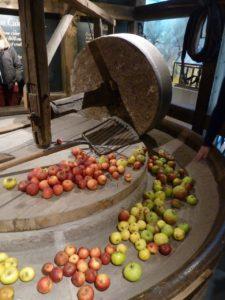 äpplen och päron engelska